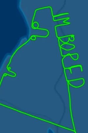 Pilot Draws Penis
