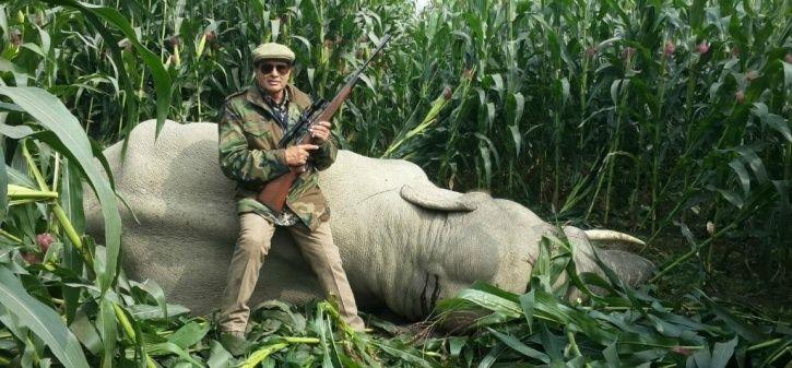 Shafath Ali Khan, mat-eater tigers, terrorists, shooter, Avni, Maharashtra, Asghar Ali Khan