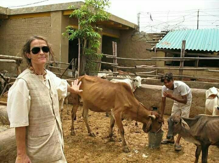 German woman, Friederike Irina Bruning, Sudevi Mataji, cow shelters, Mathura, Uttar Pradesh
