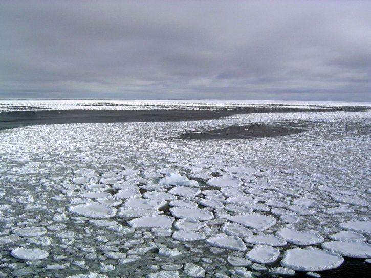 Antarctica Lost Ice By An Area Four Times Greater Than France In A Few Years, Now At Record Low