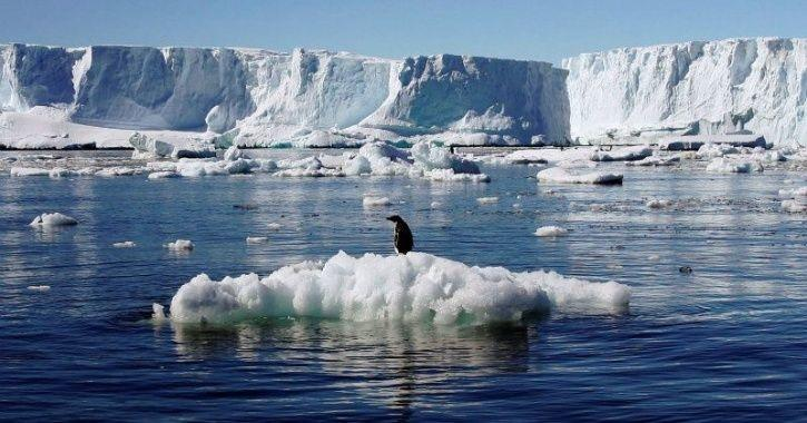 antarctica melting, south pole ice melt, antarctic ice melt, climate change, global warming, sea ris