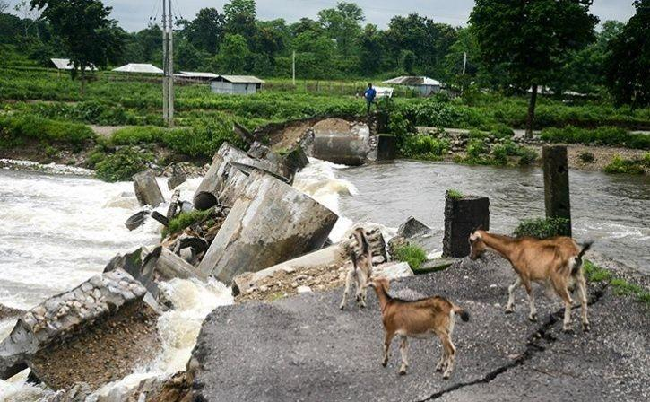 Assam Flood Image8