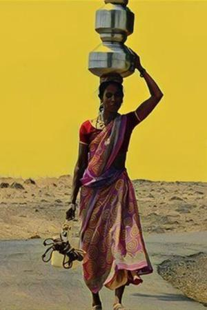 A Parched Rajasthan Village Has Wells Divided For Brahmins Muslims Lower Caste Villagers