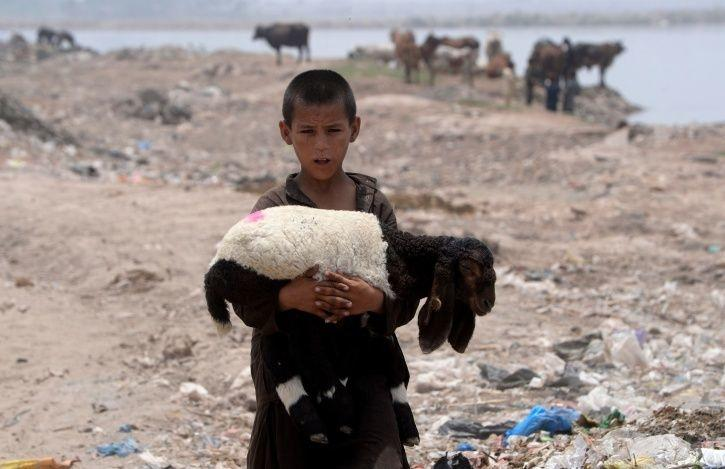 Compassion In Short Supply As 64% Indians Don't Want Refugees In The Country