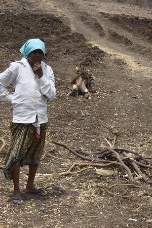 maharashtra farmer widows