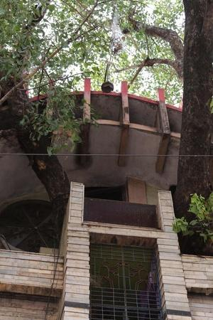 novel tree house
