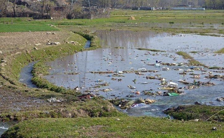 Plastic Ban In J&K Opens Door For Revival Of Wicker Crafts