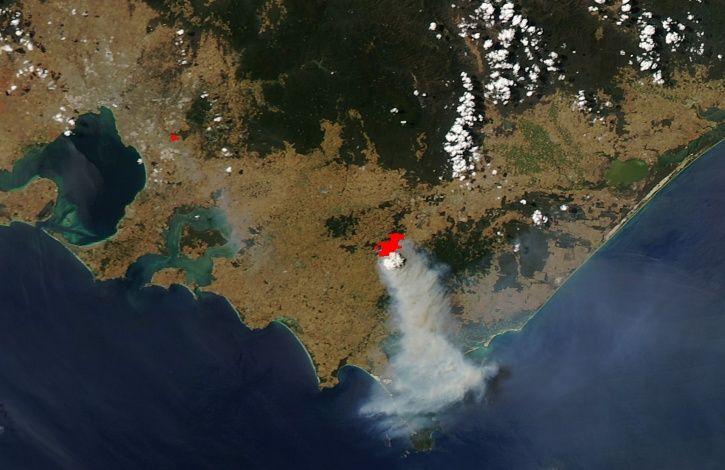 Deforestation Australia