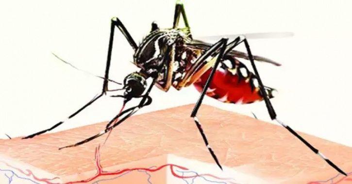 new mallaria vaccine