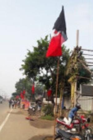 aiadmk flagpole