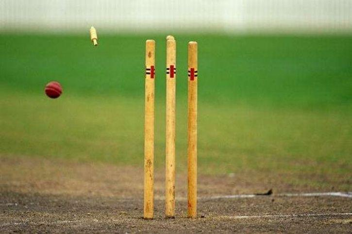 cricket stump