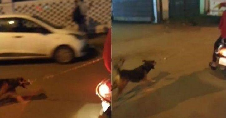 pune men dragged a dog, scooty, animal cruelty, men tied a dog