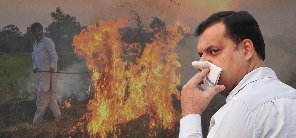 States, Chattisgarh, Gauthan Model, Curb Air Pollution