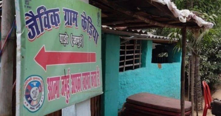बिहार का एक गांव, जहां पूरी तरह से की जाती है ऑर्गेनिक खेती।Jamui kedia  village is now only organic village of bihar