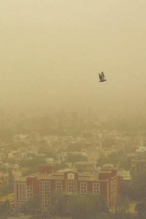 delhi pollution AQI Air Pollution Diwali Crackers