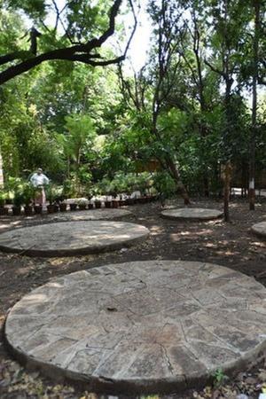 Pune College