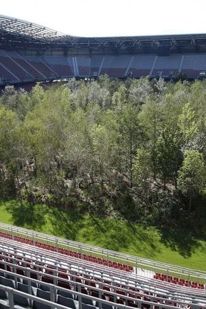 This Austrian football stadium has a forest in it