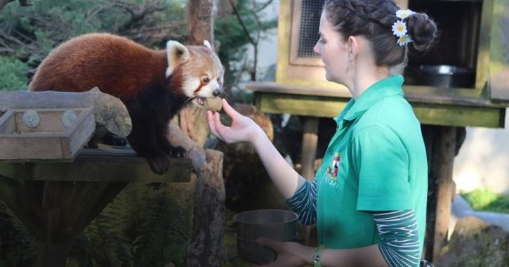 Zookeepers Go Into Self-Isolation To Take Care Of Animals