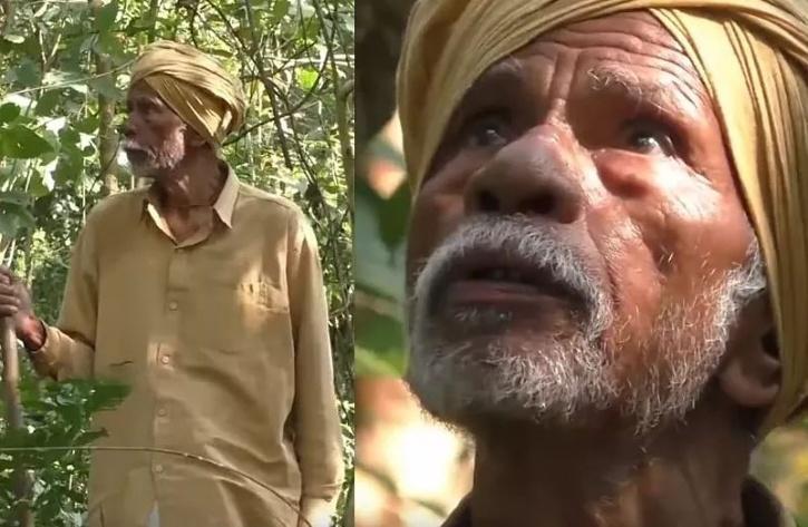 Odisha's 'Tree Man' plants 20,000 trees in wife's memory