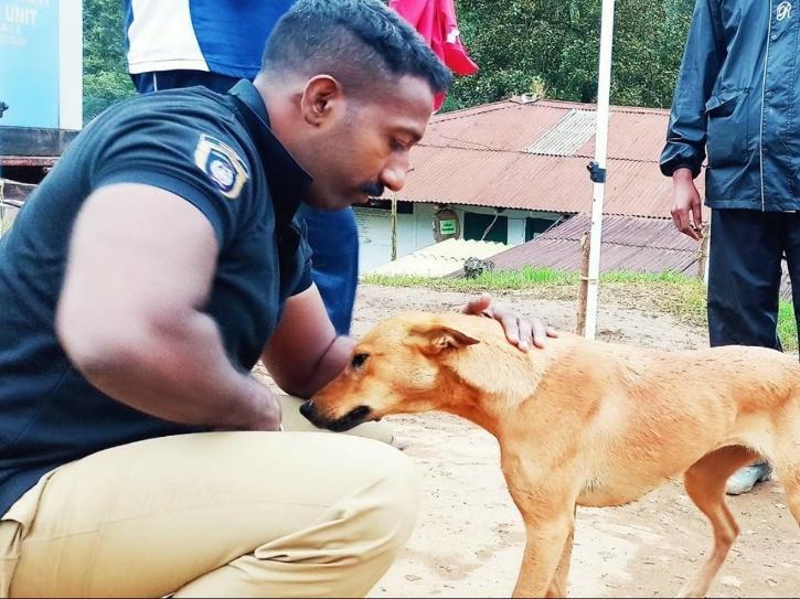 Kuvi, Kuvi Dog, Munnar Dog, Munnar Landslide, Munnar Landslide Victims, Kerala Landslide