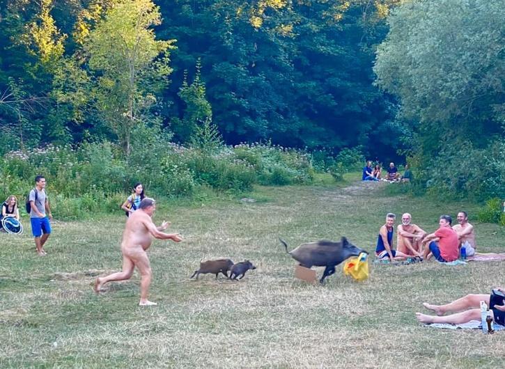 naked man runs behind boar