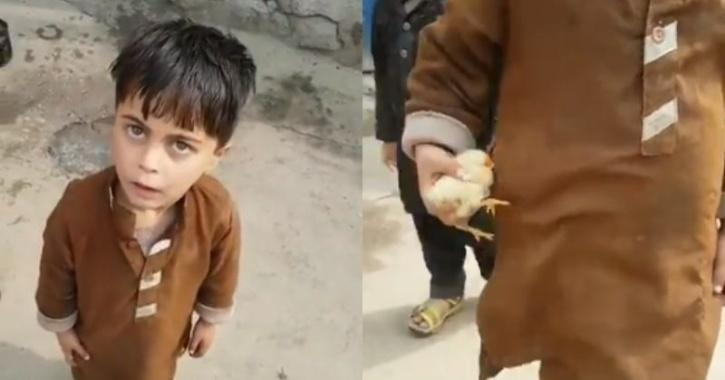 Kid carrying chick in pocket