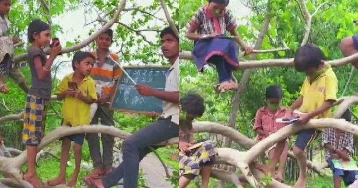 Students sitting on trees