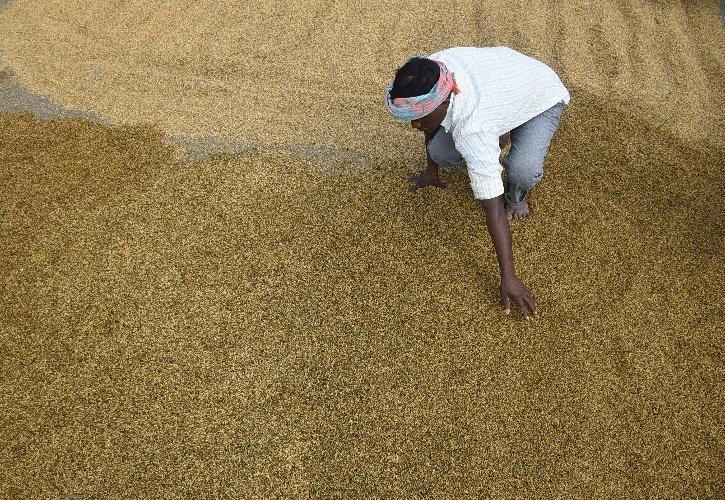 Maharashtra Farmers
