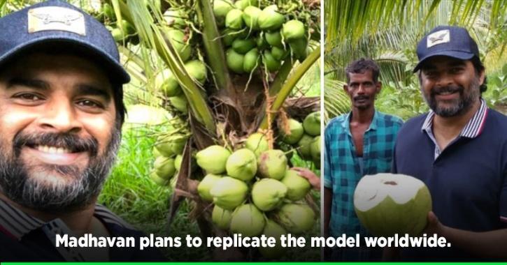 R Madhavan Buys A Barren Piece Of Land In Tamil Nadu, Turns It Into Lush Green Coconut Farm