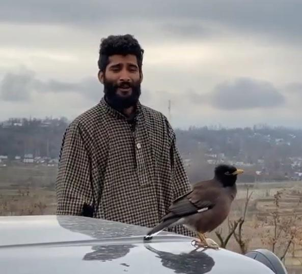 Man sings and the bird perched on his car