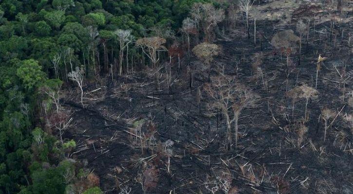 amazon rainforest climate change