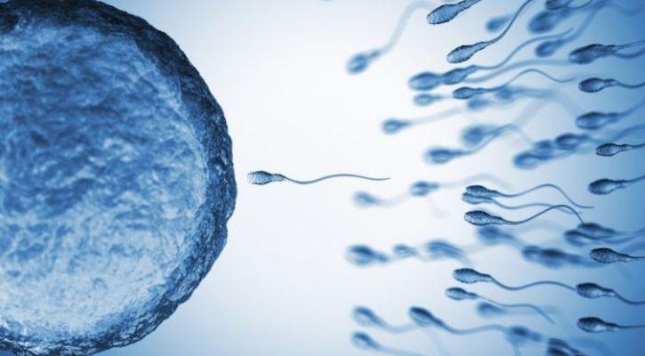 stress infertility