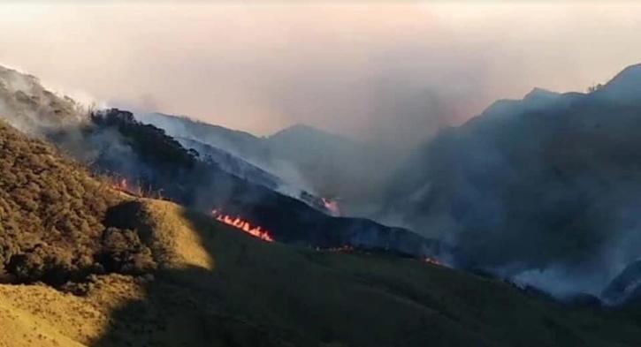 Wildfire, Nagaland, Dzukou Valley, Dzukou Valley, Dzukou Valley Fire, Dzukou Valley Biodiversity