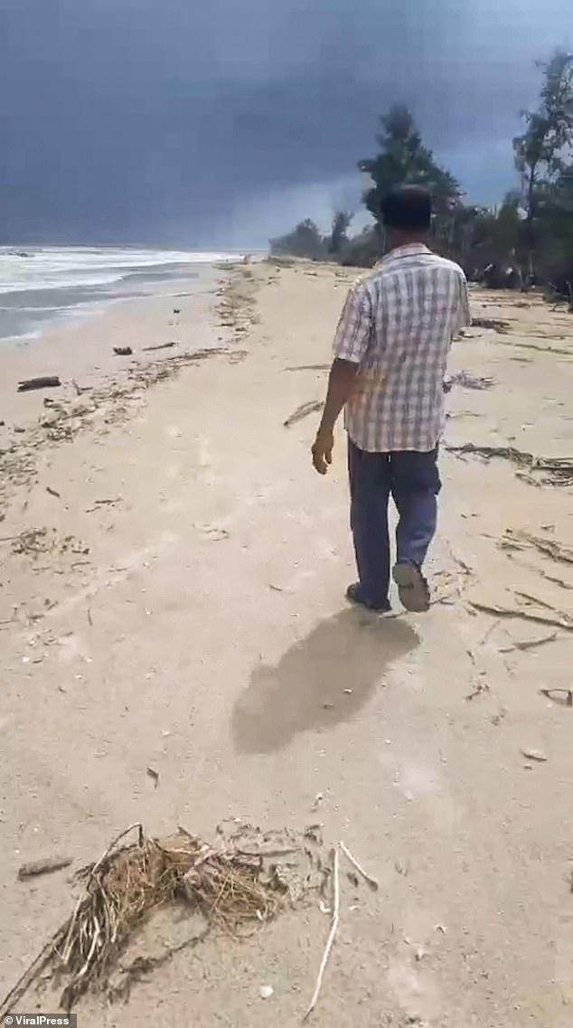 The report states that he was walking along the beach and noticed some strange 'rock-like lumps'