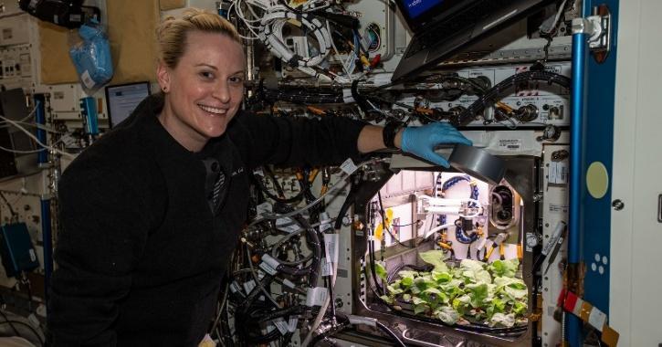 astronauts grow radish in space