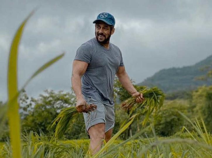 Salman Khan farming