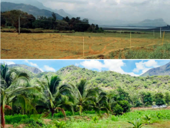 R Madhavan turns barren land into coconut farm.
