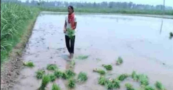 Amarjeet Kaur Farmer Daughter Of Haryana