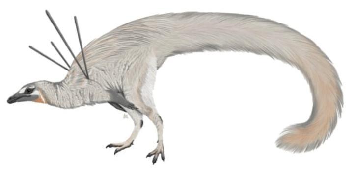 dinosaur-5fdb29f36068a