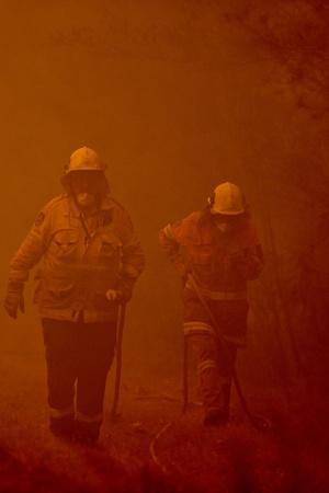 Facts You need To Know About Australian Wildfires