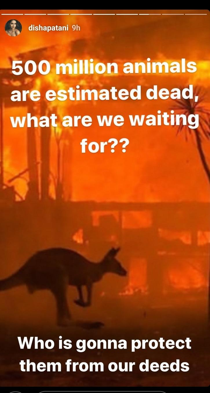 Disha Patani on Australia Wildfires.