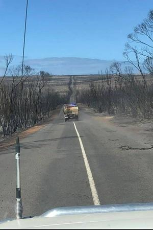 australia bushfire before and after