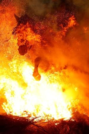 Horses Jump Over The Fire To Get Purified