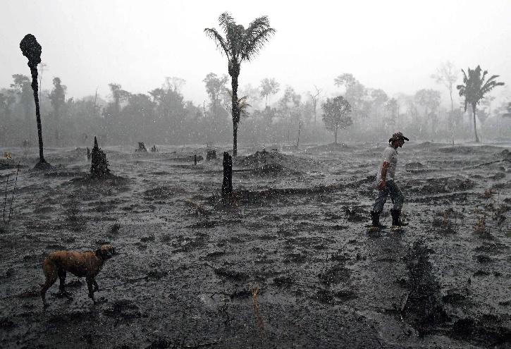 AMAZON forest fire, Brazil AMAZON forest fire, Amazon Forest Fire 2020, Wildfire, Brazil COVID-19