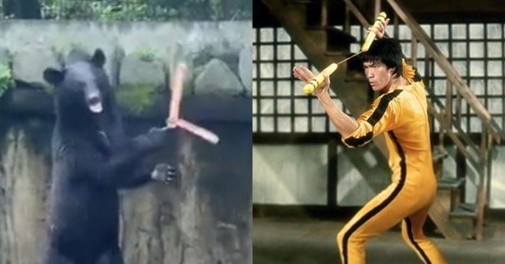 Bear and Bruce Lee using nunchuck