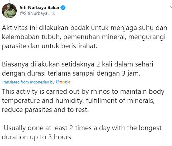 Tweet by Siti Nurbaya Bakar