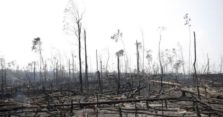 Amazon rainforest deforestation due to mining operations