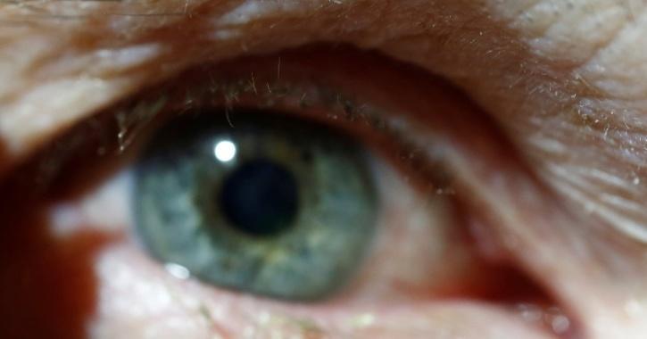 Human eyesight improvement study