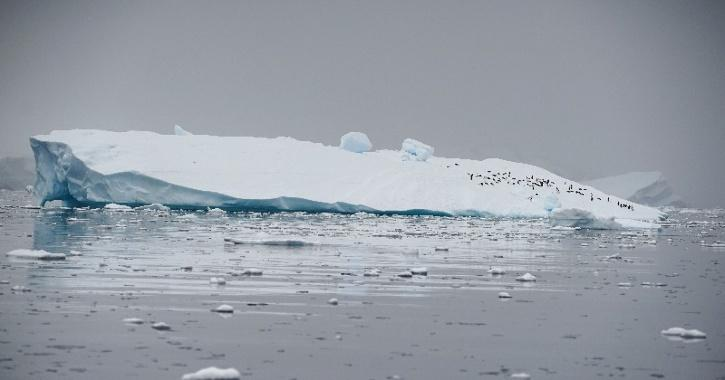 Antarctica impact on global climate change and sea level rise