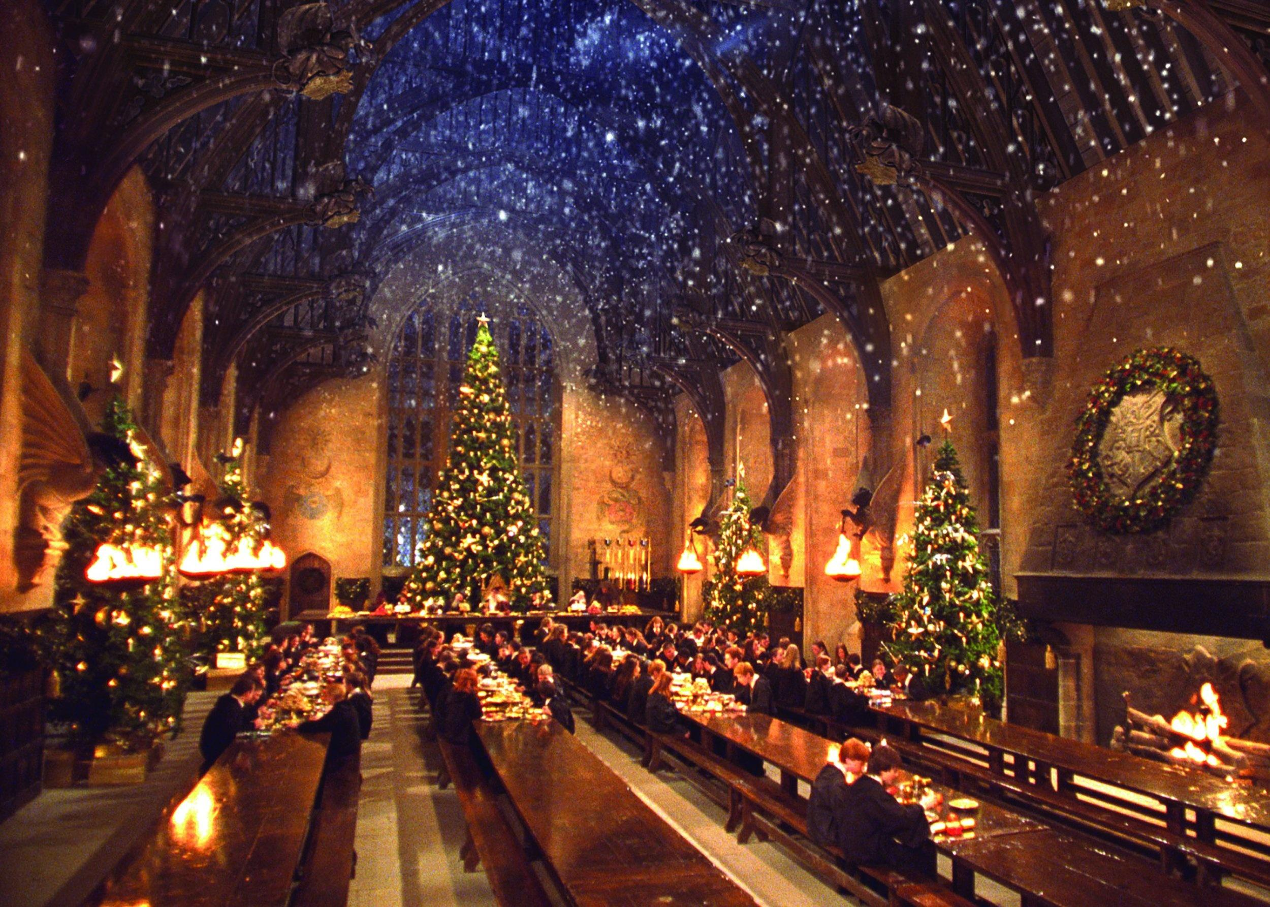 Harry Potter: The Great Hall of the Christ Church College